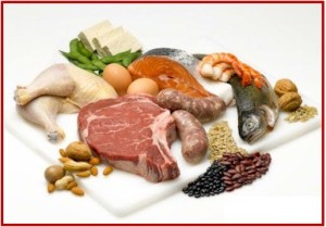 protein-examples